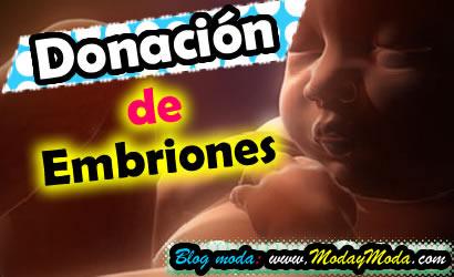 Donación de embriones lo que debes saber